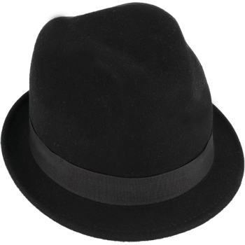 Shielded hat (black color)
